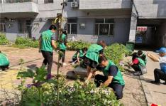 创建文明城 志愿者们在行动
