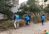 """""""蓝马甲""""清理路边杂草 美化环境助创城"""