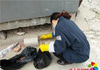 白梅社区投放鼠药 营造干净家园