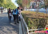 清理绿化带卫生 志愿服务助创城