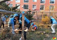 丹吉社区开展花坛清理志愿服务活动
