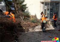 清理辖区卫生死角,携手共建文明城市