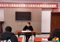 文新社区组织学习中共延吉市第十五届党代会第四次会议精神