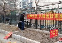 """延春社区立足""""三早""""治理圈地种菜行为"""