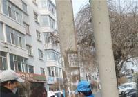 碧水社区志愿者在行动 亮化小区新风貌