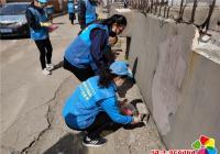 晨光社区开展春季灭鼠防疫活动