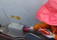延春社区投放鼠药解决居民灭鼠难题