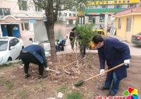 开展人居环境卫生整治活动  助力创城