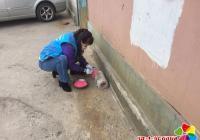 园校社区开展投鼠药除四害活动