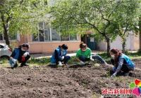 """社区清理""""私建菜园"""" 播撒花籽美化环境"""