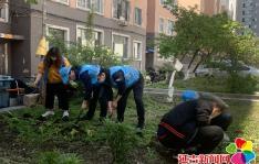"""新兴街道开展""""祛疤栽花•绿满延吉""""志愿活动"""