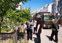 新兴街道整治圈地种菜提升城市形象