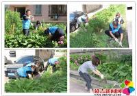 集中整治辖区环境 为创城助力