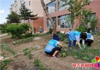 """丹明社区开展""""禁止毁绿种菜 共建美好家园""""志愿服务活动"""