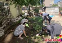 新兴街道志愿者清理花坛绿地 美化辖区环境
