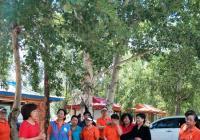 园辉社区开展睦邻节之夏游园活动