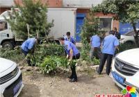 新兴街道清理小区种菜  净化居住环境