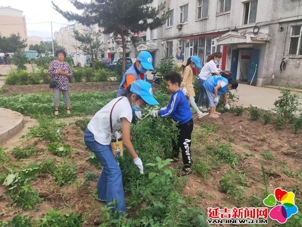 【助力创城】200名小志愿者为创城助力