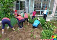 教师发力助创城环境整治正当时