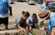 协力共创文明城市   小小志愿者在行动