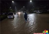 """雨水淹没马路   社区""""出手""""挪车"""