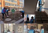 """新兴街道民泰社区开展""""加强环境整治 共创美丽家园""""志愿服务活动"""