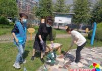 """白丰社区开展""""清理垃圾、美化家园""""志愿服务活动"""