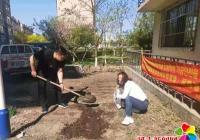 丹光社区开展美化社区环境活动