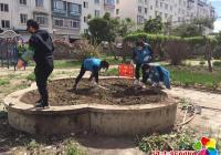 延青社区整治毁绿种菜 维护创城文明成果