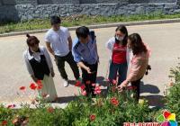 开展种植罂粟大排查,维护辖区平安稳定